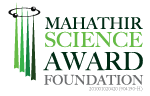 MSA FOUNDATION